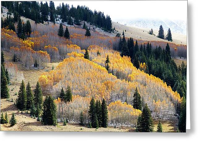 The End Of Fall Greeting Card