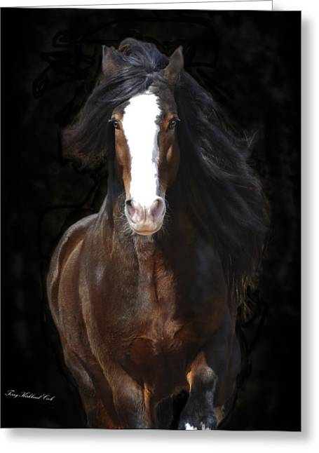 Gypsy Vanner Horse Greeting Cards - The English Shire as Art Greeting Card by Terry Kirkland Cook