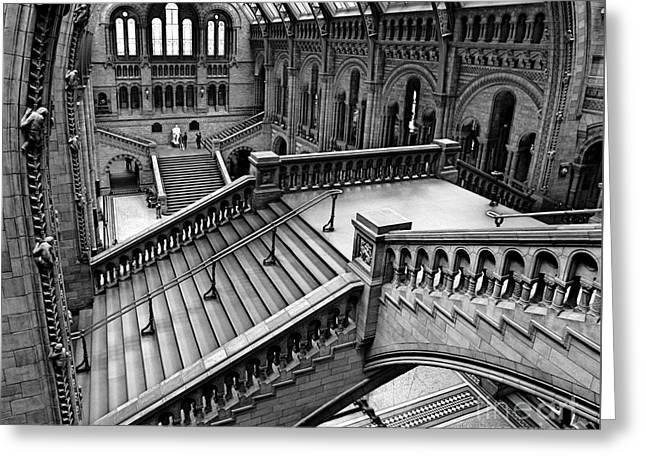 The Escher View Greeting Card