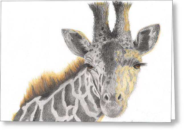 Greeting Card featuring the drawing The Eyes Have It by Phyllis Howard