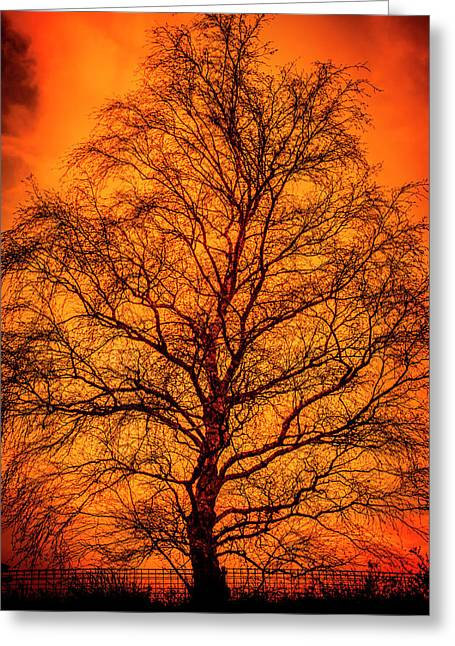 The Fable Known As Hell Greeting Card by Jorgo Photography - Wall Art Gallery