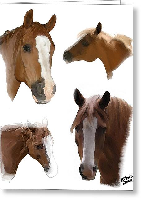 The Faces Of T Greeting Card by Elzire S