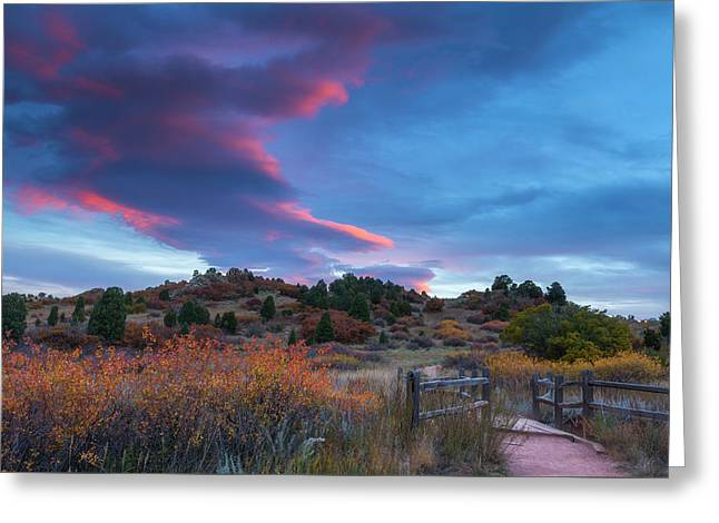 Greeting Card featuring the photograph The Fall Meadow by Tim Reaves