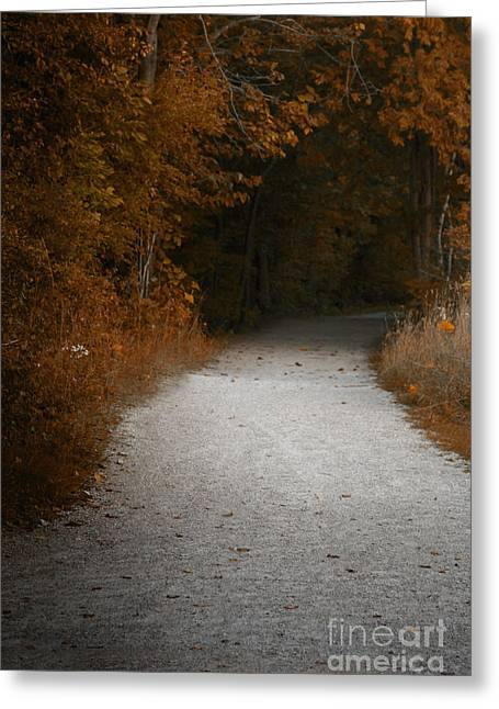 The Fall Path Greeting Card