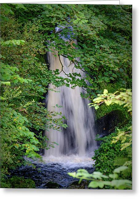 The Falls At Patie's Mill Greeting Card