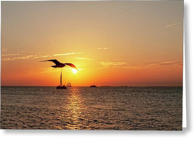 The Famous Key West Sunset  Greeting Card