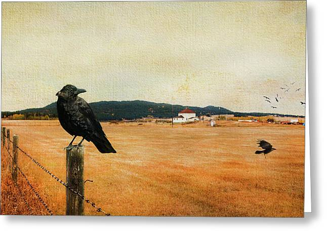 Crow And Raven Greeting Cards Page 3 Of 8 Fine Art America