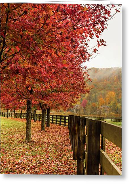 The Farm In Fall Greeting Card by Sallie Woodring