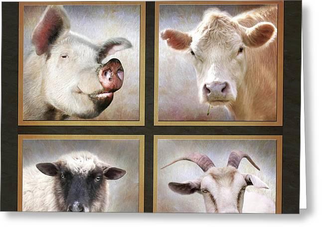 The Farm  Greeting Card by Lori Deiter