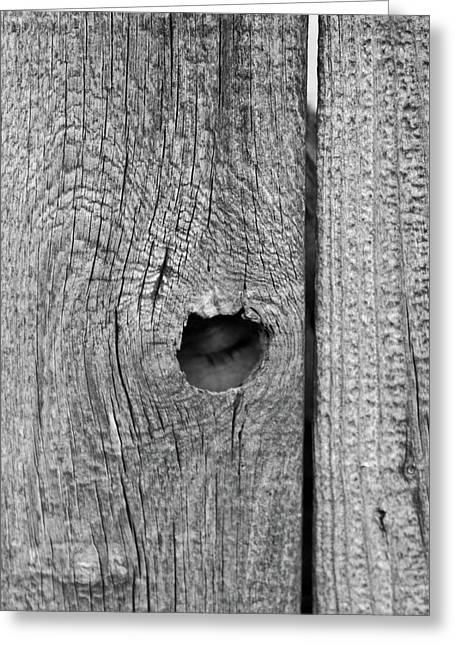 The Fence That Sleeps Greeting Card by Douglas Barnett