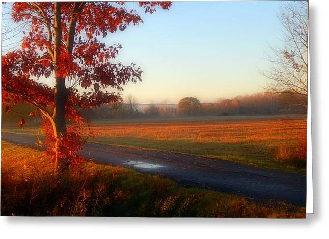 The Fields Of Autumn Greeting Card