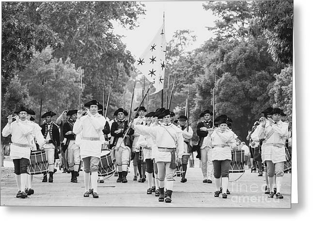 The Fifes And Drums In Colonial Williamsburg Greeting Card by Rachel Morrison