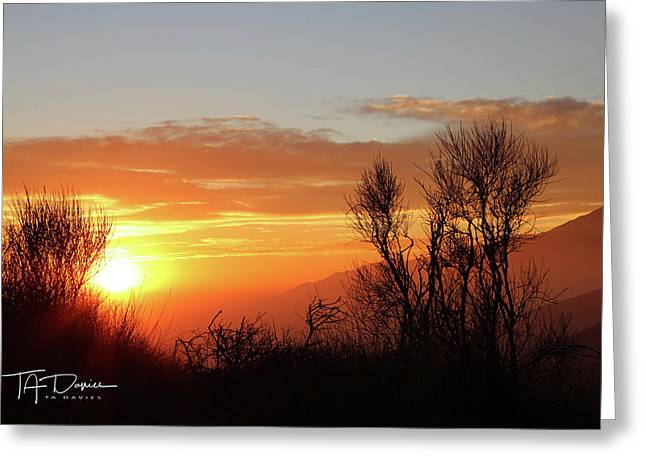 The Fire Of Sunset Greeting Card