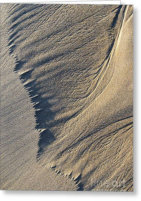 The Flight Of Sand Greeting Card