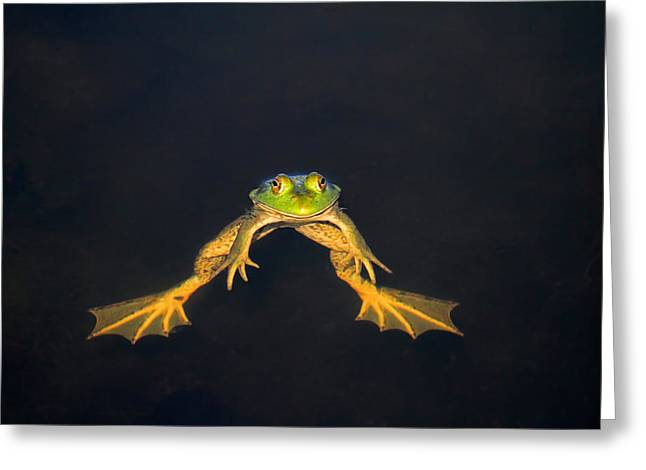 The Floater Greeting Card by Donna Kennedy