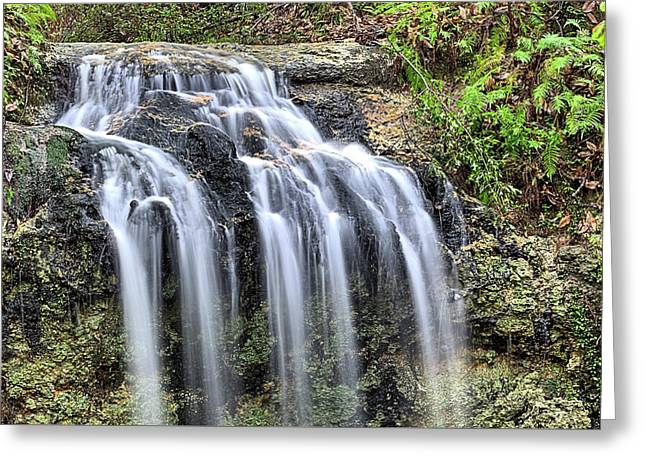 The Florida Waterfall Greeting Card by JC Findley
