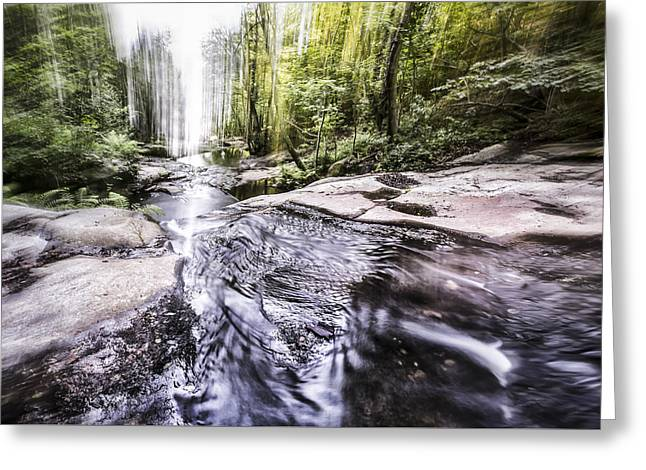 The Flow Of Life Greeting Card by Marc Garrido