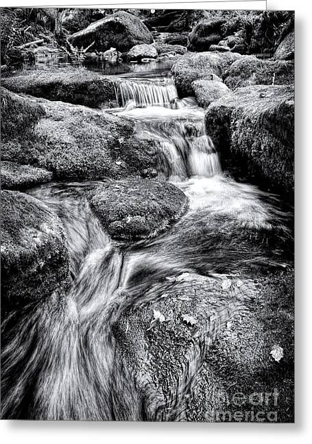 The Flow Greeting Card by Tim Gainey