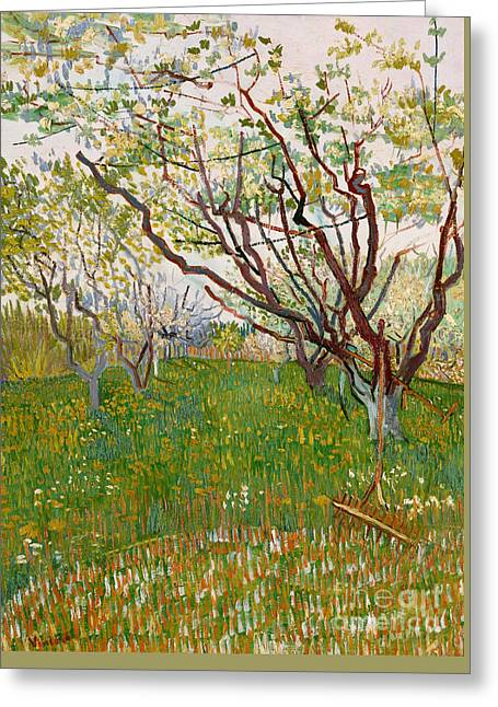 The Flowering Orchard, 1888 Greeting Card by Vincent Van Gogh