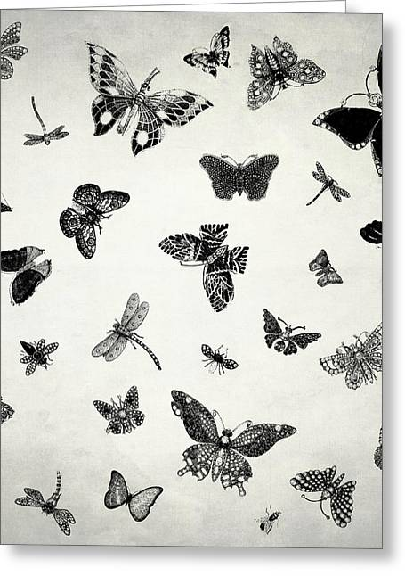 The Flutter And Fly Greeting Card by Mark Rogan