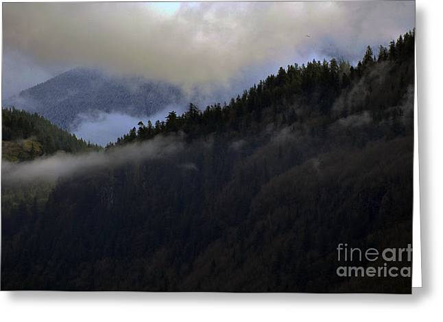 The Fog Descends On Sumas Greeting Card by Clayton Bruster