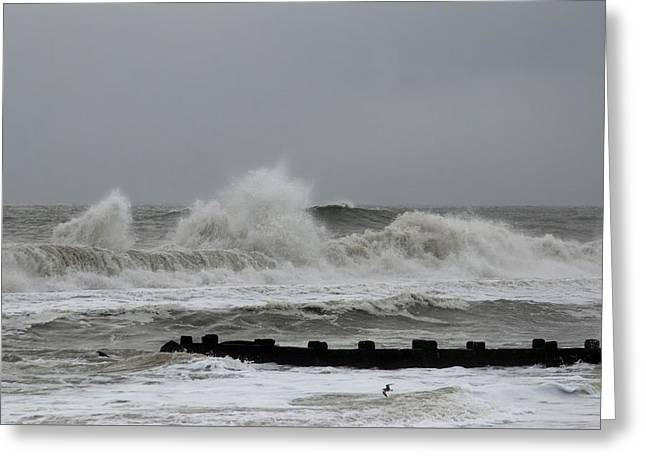 The Force Of Nature - Jersey Shore Greeting Card by Angie Tirado