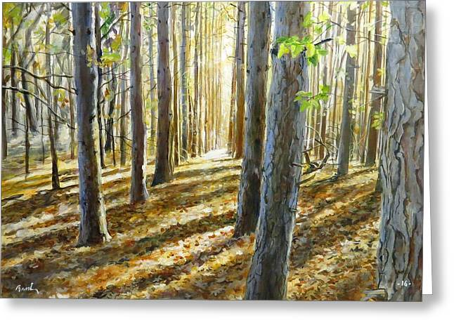 The Forest And The Trees Greeting Card
