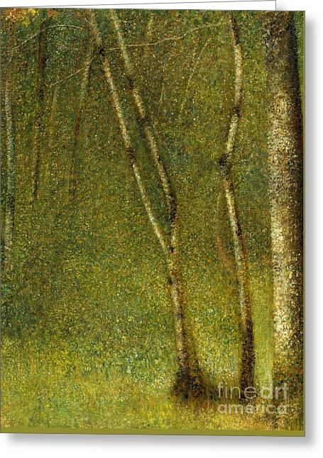 The Forest At Pontaubert, 1881 Greeting Card by Georges Pierre Seurat