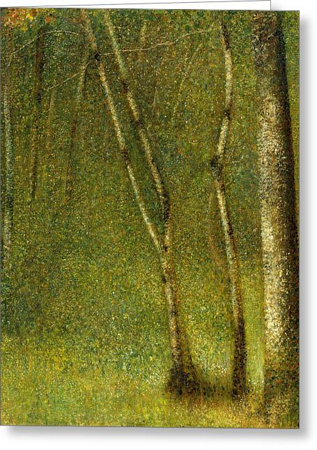 The Forest At Pontaubert Greeting Card by Georges-Pierre Seurat