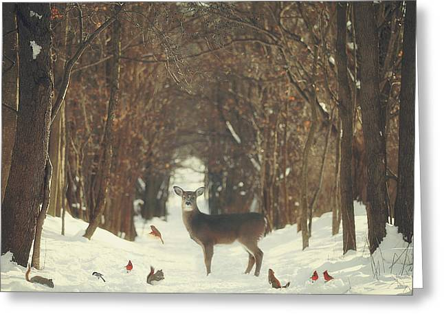 The Forest Of Snow White Greeting Card