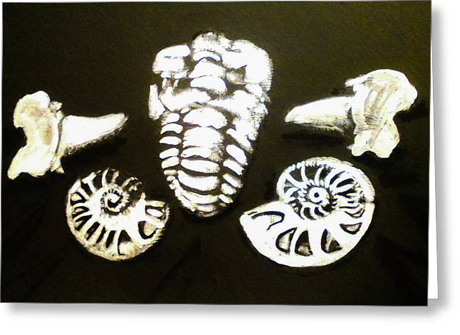 The Fossil Arrangement In Black And White-original Painting Greeting Card by Barbara Searcy