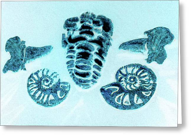 The Fossil Arrangement -original Painting In Blue Reflection Greeting Card by Barbara Searcy