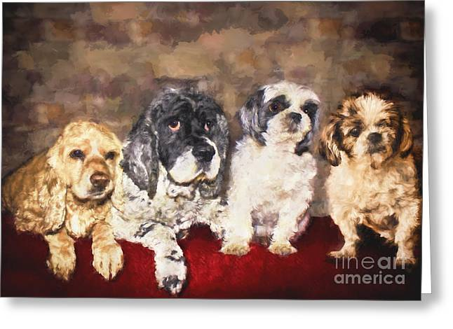 The Four Amigos Greeting Card by Janice Rae Pariza