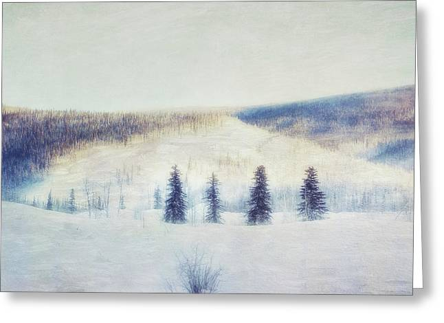 The Four Evergreens Greeting Card