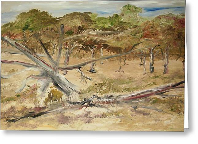 The Fourty-niner Highwaytrees Greeting Card by Edward Wolverton
