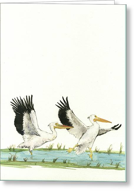 The Fox And The Pelicans Greeting Card