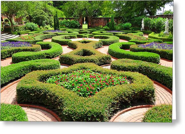 The Garden 2 Greeting Card by Mike McGlothlen
