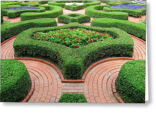 The Garden 4 Greeting Card by Mike McGlothlen