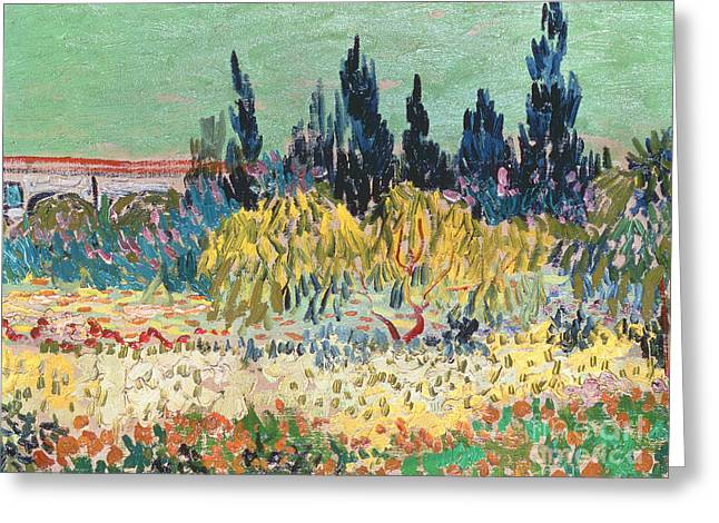 Sunlight On Flowers Greeting Cards - The Garden at Arles  Greeting Card by Vincent Van Gogh
