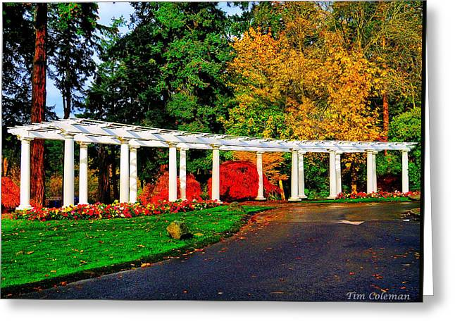 The Garden At Wapato Park Greeting Card by Tim Coleman