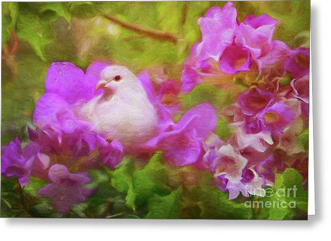 The Garden Of White Dove Greeting Card