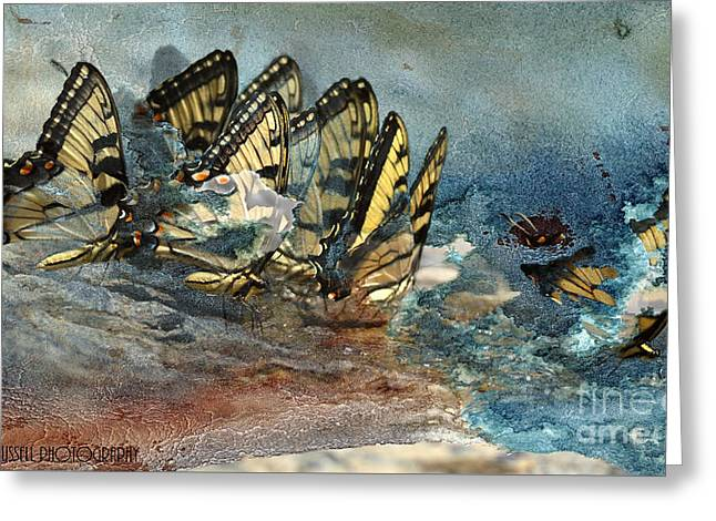 The Gathering Greeting Card by Kathy Russell