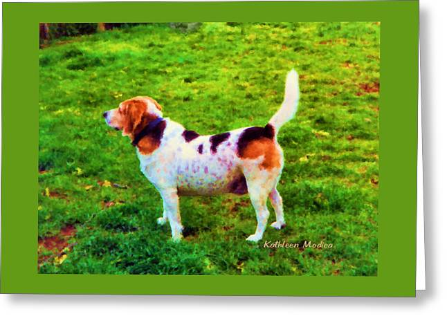 Greeting Card featuring the photograph The Gentle Leader Standing Tall by KLM Kathel