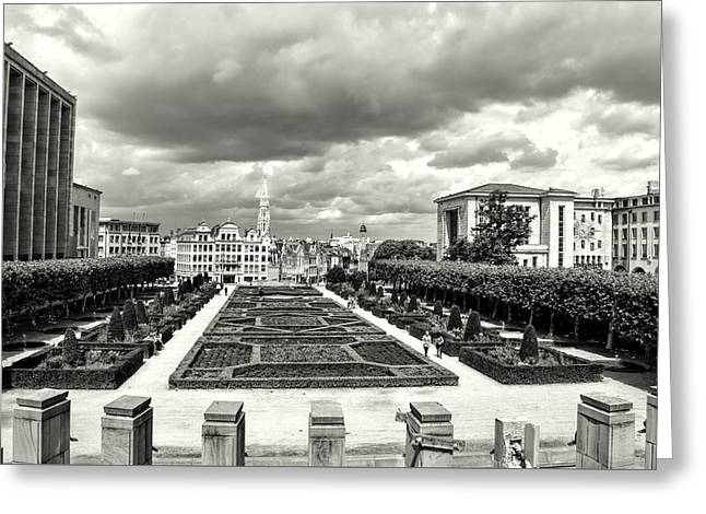The Geometric Garden In Black And White Greeting Card