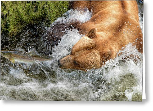 Just Out Of Reach Greeting Card by Lorraine Logan