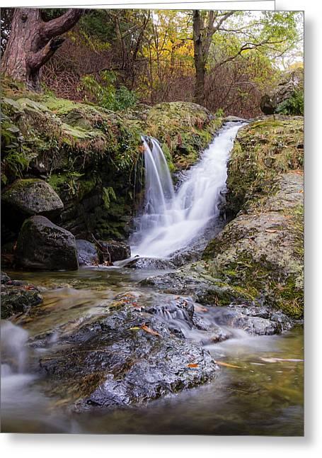 The Glen River Falls Greeting Card