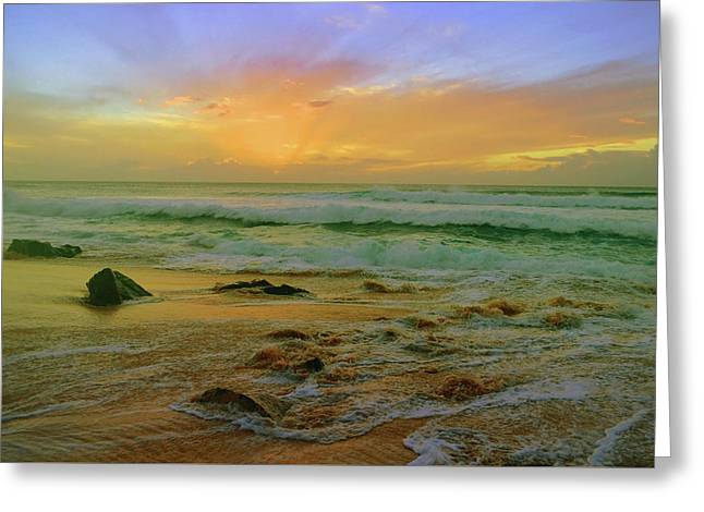 Greeting Card featuring the photograph The Golden Moments On Molokai by Tara Turner