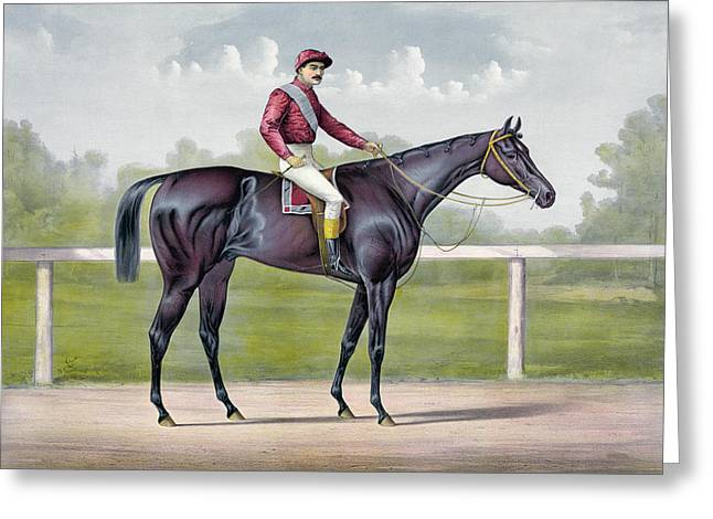 The Grand Racer Kingston  Greeting Card by Currier and Ives