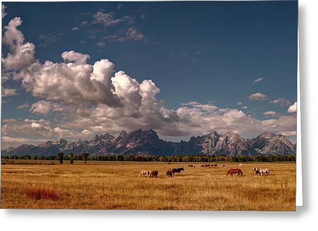 The Grand Tetons National Park Horses Olena Art Photography   Greeting Card