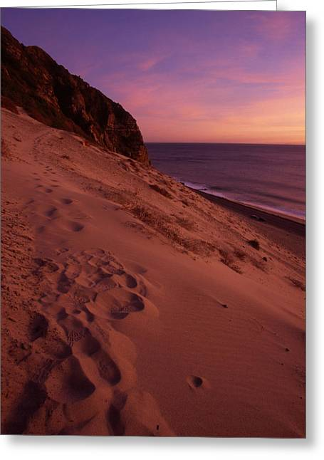 The Great Dune Greeting Card by Soli Deo Gloria Wilderness And Wildlife Photography